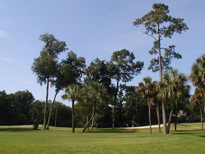 Savannah and Coastal Georgia Golf Courses